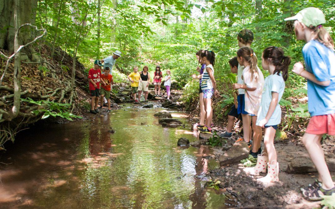 Summer Camp – Aquatic Adventures