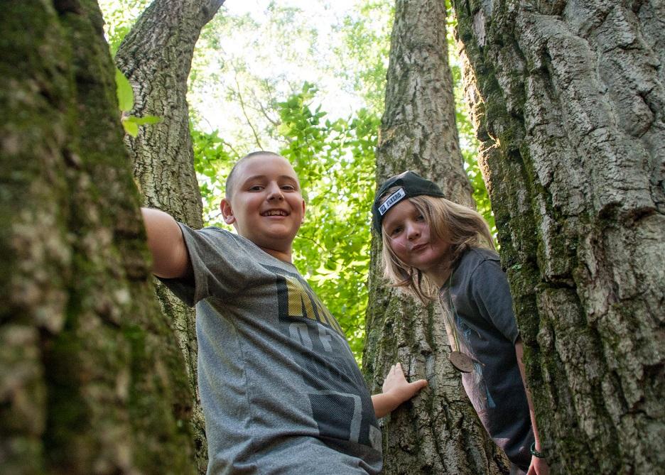 Summer Camp – Operation:SURVIVAL