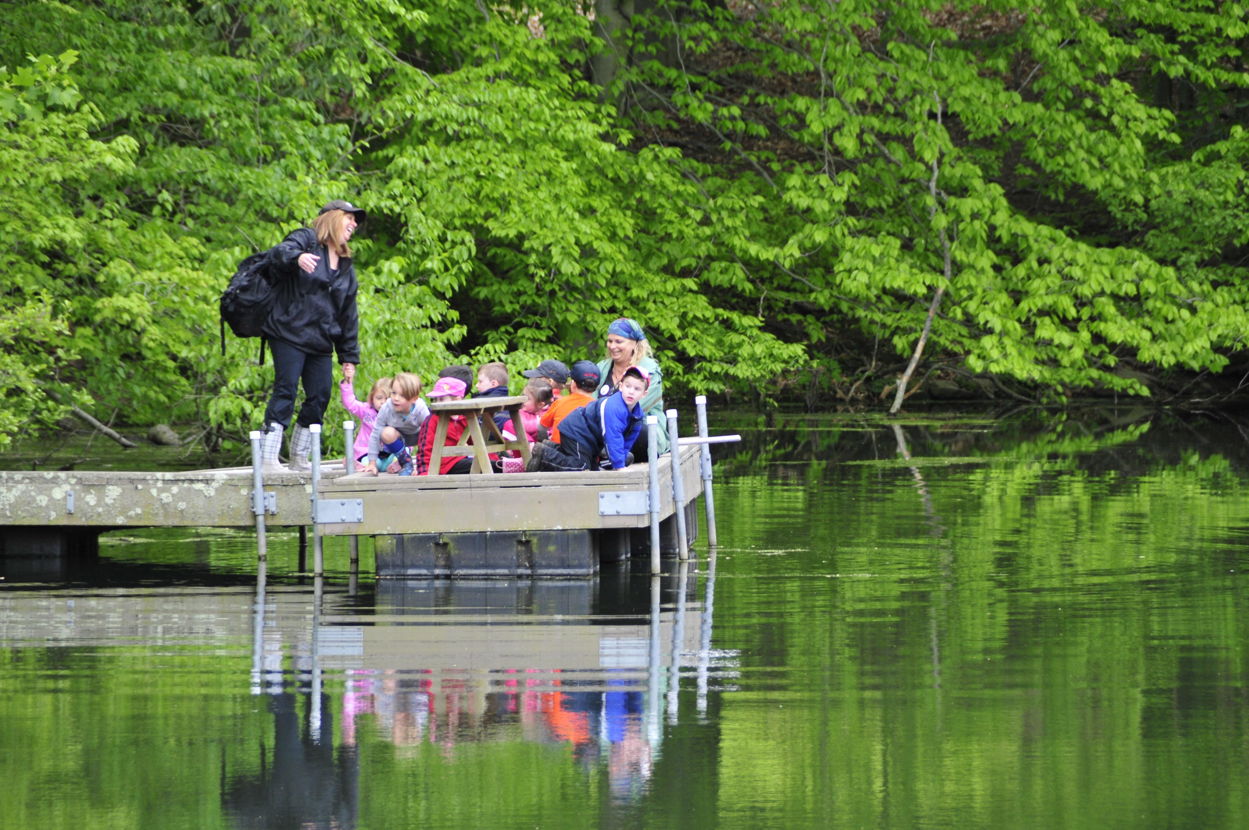 school programs. wetlands and watersheds
