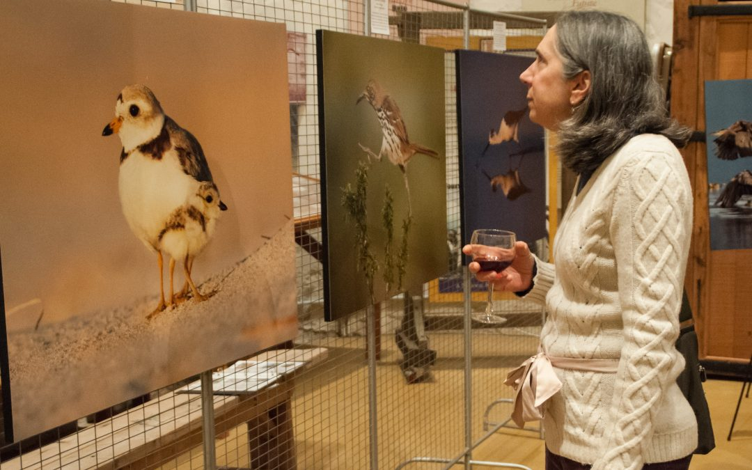 Nat. Audubon Photo Exhibit Opening Reception