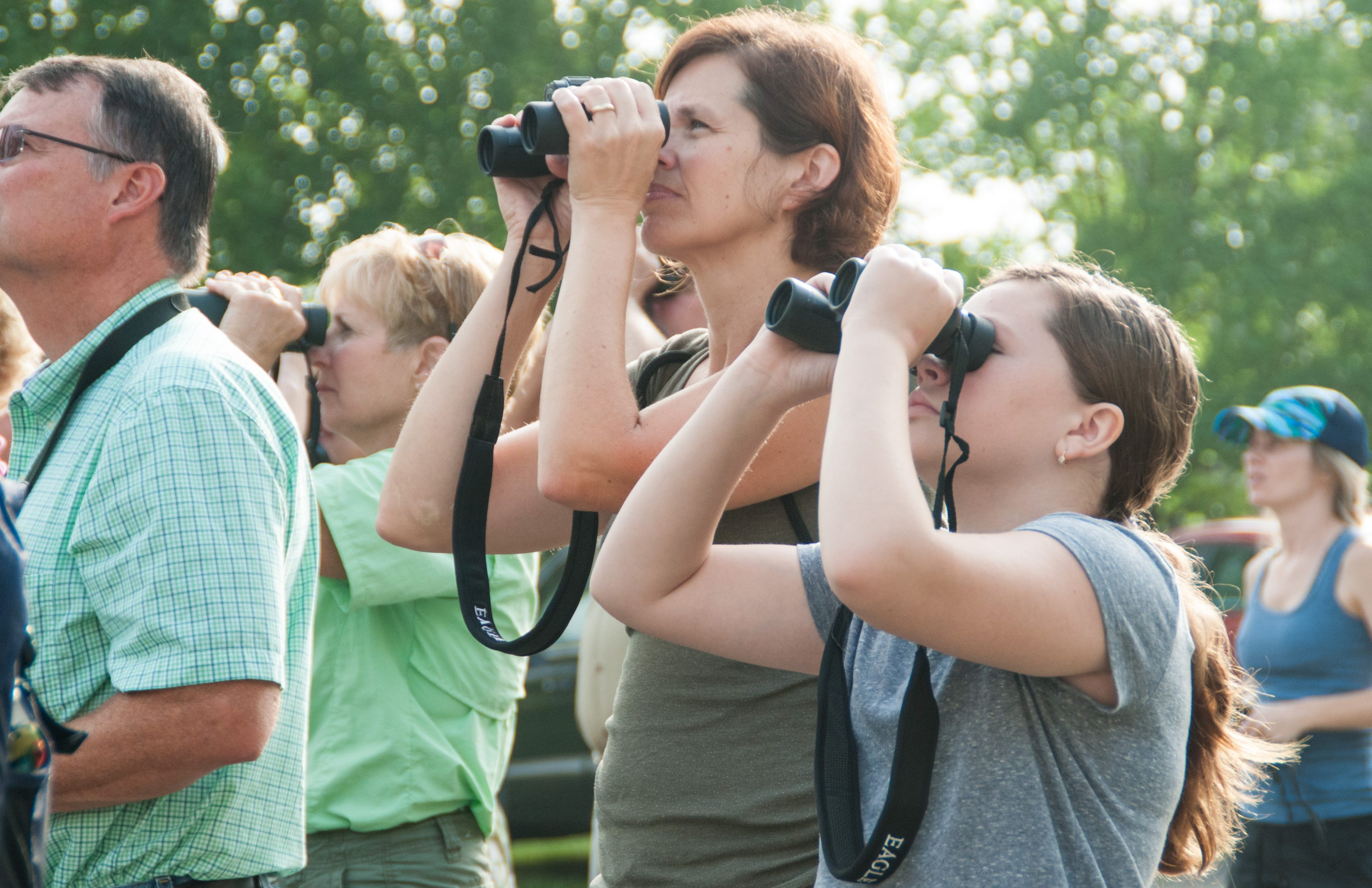 A group of people with binoculars looking for birds