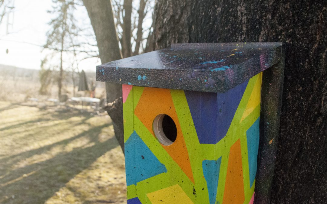 Bird Box Decorating Contest Registration Opens!