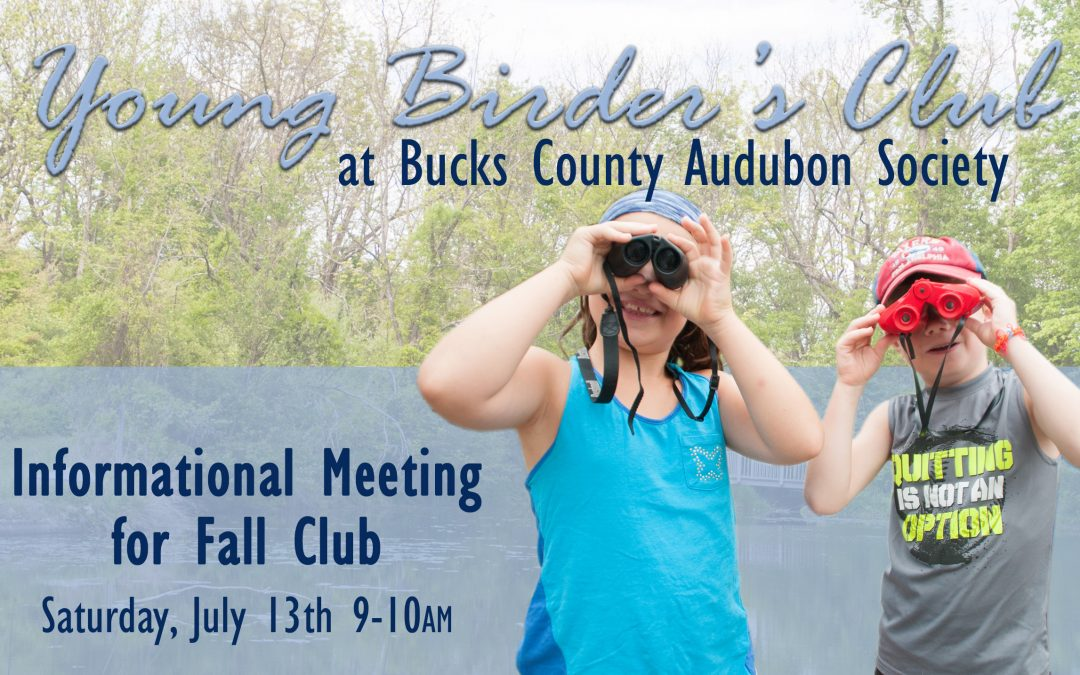 Young Birder's Club Info Meeting